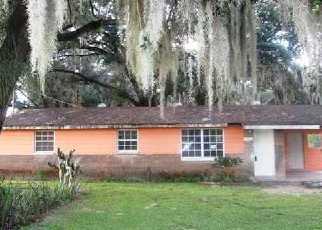 Casa en ejecución hipotecaria in Dover, FL, 33527,  LANSON CREEK LN ID: F2753844