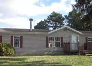 Foreclosure Home in Alma, MI, 48801,  GRAFTON AVE ID: F2972772