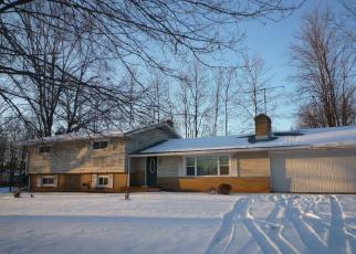 Foreclosure Home in Portage county, OH ID: F3155855