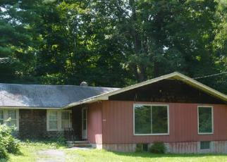 Foreclosure Home in Ulster county, NY ID: F3218759