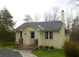 Foreclosure Home in Ulster county, NY ID: F3218907