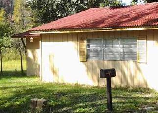 Foreclosure Home in Land O Lakes, FL, 34638,  LITTLE LAKE THOMAS RD ID: 6179522