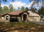 Foreclosed Home en SW 204TH AVE, Dunnellon, FL - 34431