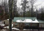 Foreclosed Home en FEDERAL CITY RD, Middleburgh, NY - 12122