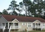 Foreclosed Home en SANTA ANNA ST, Port Saint Joe, FL - 32456