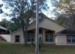 Foreclosed Homes in Orlando, FL, 32825, ID: F3599114