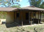 Foreclosed Home en NE 20TH AVE, Ocala, FL - 34479