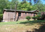 Foreclosed Home en SPRING CREEK RD, Trion, GA - 30753