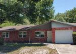 Foreclosed Home en WINDING OAK DR, Tampa, FL - 33625
