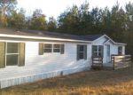 Foreclosed Home en HORSETAIL AVE, Middleburg, FL - 32068