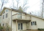 Foreclosed Home en PINE RIDGE DR NE, Belding, MI - 48809
