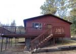 Foreclosed Home en MILLER LN, Florissant, CO - 80816