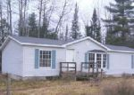 Foreclosed Home en CHAFFIN RD, Frederic, MI - 49733