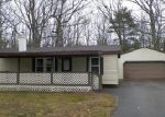 Foreclosed Home en SHERWOOD DR, Indian River, MI - 49749