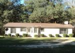 Foreclosed Home en TWO CREEK BLVD, Vernon, FL - 32462