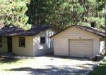Foreclosed Home en WARREN DR, Fairview, MI - 48621