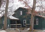 Foreclosed Home en W ECHO DR, White Cloud, MI - 49349