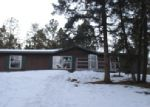 Foreclosed Home en ANDERSON RD, Florissant, CO - 80816