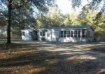 Foreclosed Home en 224TH ST, O Brien, FL - 32071