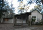 Foreclosed Home en LAZY BONE DR, Vernon, FL - 32462