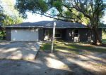 Foreclosed Home in BARTON DR, Lutz, FL - 33549