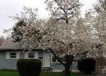 Foreclosed Home en OAKMERE RD, Owings Mills, MD - 21117