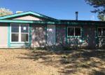 Foreclosed Home en HOLIDAY DR, Spring Creek, NV - 89815