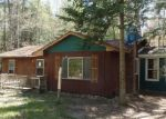 Foreclosed Home en RED PINE DR, Indian River, MI - 49749