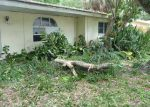 Foreclosed Home in OWEN DR, Clearwater, FL - 33759