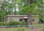 Foreclosed Home en BRYAN LN, Kountze, TX - 77625