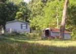 Foreclosed Home en ENGEL RD, Loudon, TN - 37774