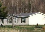 Foreclosed Home en N CAMP 10 RD, Elmira, MI - 49730