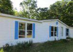 Foreclosed Home en S NICHOLAS AVE, White Cloud, MI - 49349
