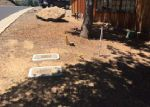 Foreclosed Home en GRINDING ROCK RD, Angels Camp, CA - 95222