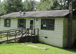 Foreclosed Home en AMELIA SPRINGS RD, Jetersville, VA - 23083