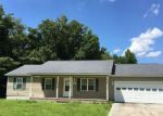 Foreclosed Home en HADLEY COLLINS RD, Maysville, NC - 28555