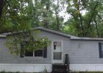 Foreclosed Home en W COUNTYLINE RD, Newaygo, MI - 49337