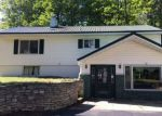 Foreclosed Home en DODGE LAKE RD, Manistique, MI - 49854