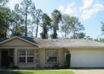 Foreclosed Home en LLEBERRY PATH, Palm Coast, FL - 32164