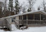 Foreclosed Home en E YELLOW RIVER RD, Danbury, WI - 54830