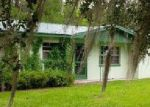 Foreclosed Home en CR 739, Webster, FL - 33597