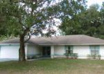 Foreclosed Home en PERROTTI LN, Palm Coast, FL - 32164