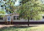 Foreclosed Home en WOLF CREEK RD, Pell City, AL - 35128