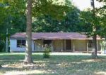 Foreclosed Home en WRIGHT RD, Hillsboro, OH - 45133