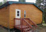 Foreclosed Home en BANNER TRL, Florissant, CO - 80816