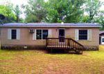 Foreclosed Home en E 17 MILE RD, Bitely, MI - 49309