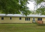 Foreclosed Home en W FORREST ST, Ashland, IL - 62612