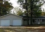 Foreclosed Home en DOUGLAS, Saint Helen, MI - 48656