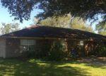 Foreclosed Home en MICHAEL ST, Inez, TX - 77968