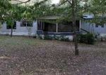 Foreclosed Home en E TURKEY ROOST DR, Greenville, FL - 32331